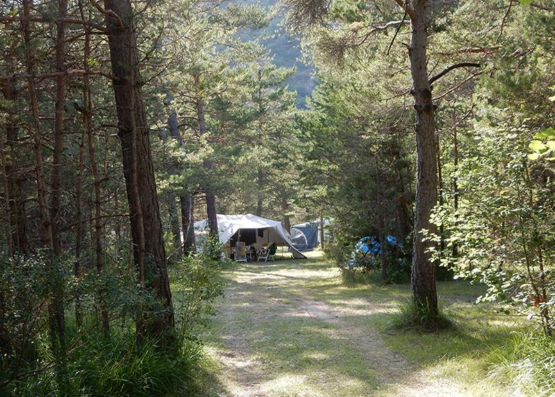 Le Parc des Sérigons-Emplacement Tente foret
