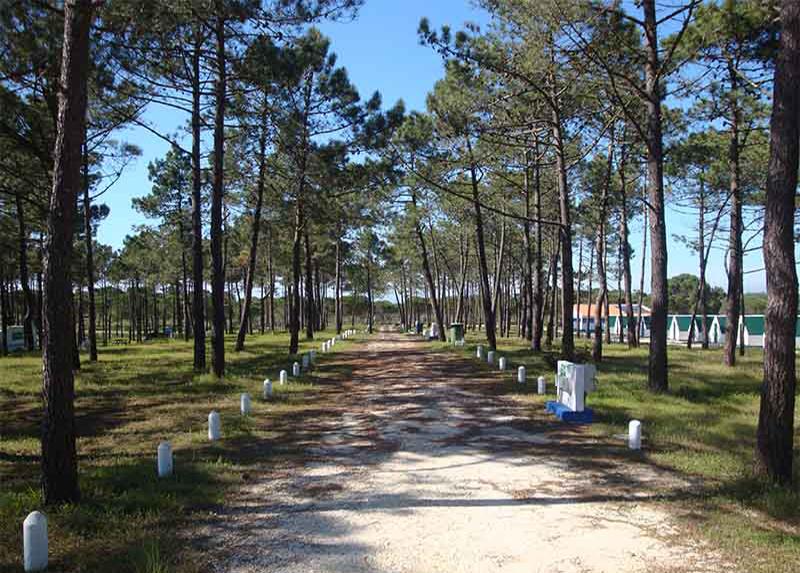 Orbitur Sitava Milfontes-Emplacements camping