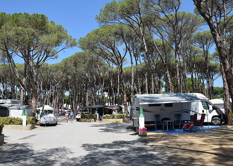 Camping Costa Brava - Emplacements Arborés